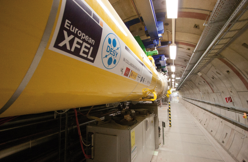 X-Fel: The European X-Ray Free-Electron Laser